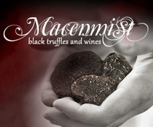 Some of the first truffle ever harvested from the Macenmist truffiere
